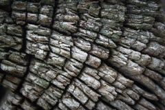 Borde de madera Imágenes de archivo libres de regalías