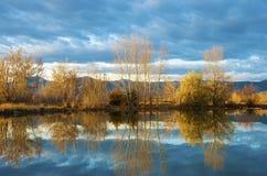 Borde del lago con reflexiones fotografía de archivo libre de regalías