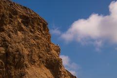 Borde marrón dentado rugoso del acantilado con una gaviota en una repisa Fondo profundo del cielo azul con las nubes hinchadas qu foto de archivo