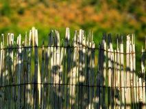 Borde superior de la cerca de lámina de bambú Imagen de archivo libre de regalías