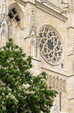 Bordeaux Cathedral Royalty Free Stock Photo