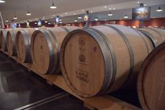 Bordeaux, France - 6 juin 2017 : Vins fermentant dans de grands barils traditionnels de chêne dans la cave photographie stock
