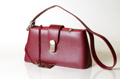 Bordeaux purse and jewerly Stock Images