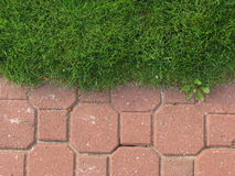 Border. Between green grass and tiled pavement; natural versus industrial Royalty Free Stock Image
