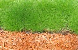 Border. Of grass and decorative shavings Stock Photo