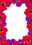 Border with Anemones. You can use this border with Anemones as a background for letters, mail, invitations, giftcards or as a picture-frame Royalty Free Stock Photography