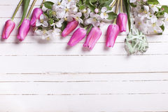 Border from apple tree flowers,  pink tulips  and green heart  o Stock Photography