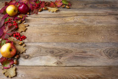 Border of apples, acorns, berries and fall leaves on the old woo. Den background. Thanksgiving background with seasonal berries and fruits. Abundant harvest stock photo
