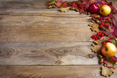Border of apples, acorns, red berries and fall leaves on the old Royalty Free Stock Photography
