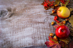 Border of apples, berries and fall leaves on the rustic wooden b Royalty Free Stock Images