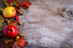 Border of apples, red berries and fall leaves on the rustic wood Stock Image