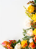Border arrangment of roses Royalty Free Stock Photos