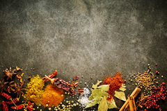 Border of assorted aromatic and pungent spices. For Asian cuisine with star anise, chili, peppercorns, bay leaves, salt, turmeric ad curcuma with copy space Royalty Free Stock Image