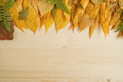 Border from autumn dry colorful leaves on the wooden background. Royalty Free Stock Photos