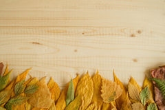 Border from autumn dry colorful leaves on the wooden background. Stock Photography