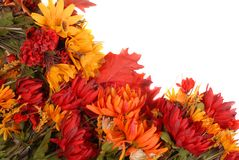 Border of autumn flowers stock images