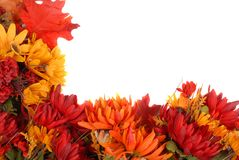 Border of autumn flowers Royalty Free Stock Image