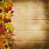 Border of autumn leaves and berries on a wooden background Royalty Free Stock Images
