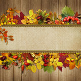 Border of autumn leaves and berries on a wooden background Stock Images