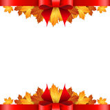 Border of autumn maples leaves decorated with a red bow. Royalty Free Stock Photos
