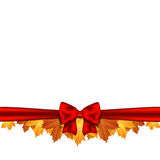 Border of autumn maples leaves decorated with a red bow. Vector Stock Image