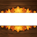 Border of autumn maples leaves on a wooden background. Stock Photography