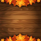 Border of autumn maples leaves on a wooden background. Royalty Free Stock Images