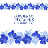 Border of blue flowers for your text Stock Image