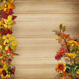Border and a bouquet of autumn leaves on a wooden background Royalty Free Stock Photo