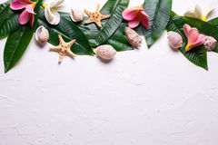 Border from bright tropical plumeria flowers and leaves on white Stock Photo