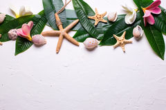 Border from bright tropical plumeria flowers, shells  and leaves Royalty Free Stock Photo