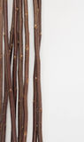 Brown Twigs Border Stock Images