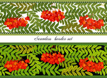 Border of bunches rowan and leaves. Seamless horizontal vector illustration. royalty free illustration