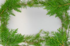 Border of cedar and tamarack branches. A border of cedar and tamarack branches with copy space in the middle for your message stock image