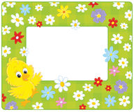 Border with a chick. Horizontal vector frame with a little yellow chicken and flowers Royalty Free Stock Image