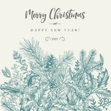 Border with Christmas plants. Winter background. Vector border with spruce branches, berries, holly, mistletoe. Greeting Christmas card in vintage style royalty free illustration