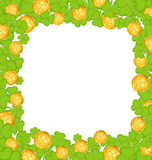 Border with clovers and golden coins for St. Patricks Day Stock Photos