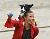 Border Collie dog and trainer Stock Photo