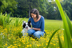 Border collie friendship Stock Images