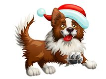 Border Collie and New Years cap. The cheerful brown puppy of a Border Collie and red cap. A yellow dog a symbol 2018 new years according to the Chinese calendar Royalty Free Stock Photography