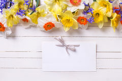 Border from colorful yellow, orange and blue spring flowers stock photos