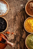 Border of colourful spice in bowls Stock Photos