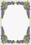 Border With Dark Grape Stock Images