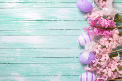 Border from decorative violet eggs  and pink hyacinths flowers Royalty Free Stock Photo