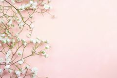 Border of delicate little white flowers on pink background from royalty free stock images