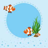 Border design with clownfish Stock Image