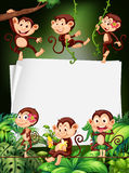 Border design with monkeys in the forest Stock Images