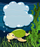 Border design with turtle underwater Royalty Free Stock Image