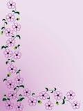 Border designs. Illustration purple floral(henna) design Stock Photos