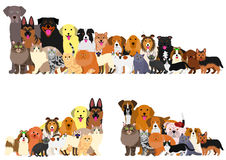 Border of dogs and cats arranged in order of height vector illustration